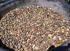 Organic Dried Sheep Manure, BULK Manure - 3 Pounds of Fertilizer
