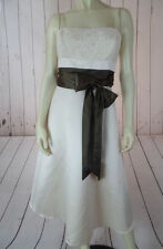 MAX & CLEO Dress 10 NEW Bisque Poly Prom Cocktail Contrast Brown Satin Waist HOT