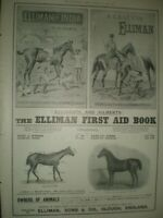Elliman's horse embrocation First Aid Book art advert 1899 ref AO