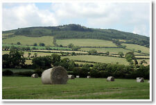 Green Hills of Ireland - Arklow Hill - Irish Travel Print - NEW POSTER