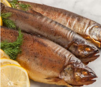 RAINBOW TROUT HOT SMOKED -Wild Caught 16oz for $15 x2p !! US SELEER !!