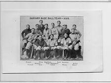 1896 Spalding - University of Harvard & Cornell Baseball Team Photos 1895