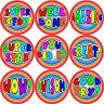 144 Colourful Praise Words 30 mm Reward Stickers for School Teachers, Parents