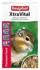 Chipmunk Small Animal Nuts&Seeds