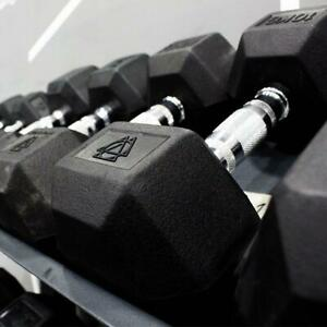 Hex Dumbbells 22.5kg Pair Rubber Encased Cast Iron Gym Fixed Weights Home