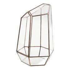 Unregelmäßige geometrische Terrarium Box Sukkulente Pflanzgefäß 12 x 12 x 19