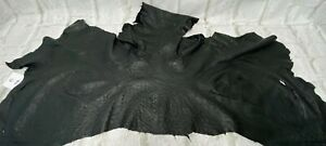 Ostrich Leather Strap Black Color  (%100 Natural)
