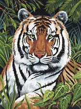 40x50 cm Schipper 609130454 Malen nach Zahlen Indien Bengal Tiger