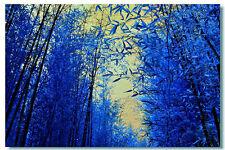 Bambù Heterocycla Blue.60 Semi  Piu 60 Semi di Bamboo Phyllostachys.Pubescenses