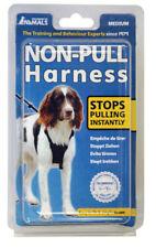 Harnais pour chiens moyens en tissu pour chien