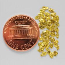 0.7981 Gram Alaska Natural Gold Nuggets --- (#59955-14) - Alaskan Gold Nuggets