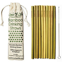 Bamboo Reusable Drinking Straws 10 Pack