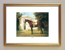 Die Pferde König Ludwig II. GISELA Schloss Nymphenburg München 1 im Goldrahmen