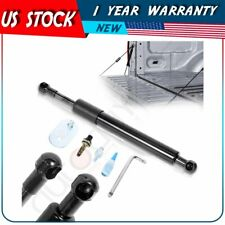Tailgate Assist Struts Lift Support Fits 99-14 Ford F-250/350 Super Duty DZ43203