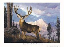 Majestic Prince by Tom Mansanarez Deer Print 7x5