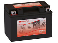 Yuasa YTZ12S Battery (Replacement)