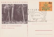 Poland postmark BIALOWIEZA - bison