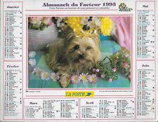ALMANACH DU FACTEUR / POSTES / PTT 1993 Oller Yorkshire / Chatons 69 Rhône