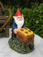 Miniature Dollhouse Fairy Garden Accessories ~ Gnome with Sunflower Cart ~ New