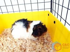 GUINEA PIG C&C CAGE 4x1: Panels x 10 + Connectors x 20 + CORREX TRAY INCLUDED