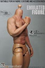 """12"""" Brazo de cuerpo muscular sin costuras Nude zctoys 3.0 macho fuerte 1/6 Escala Figura Juguete"""