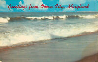 Postcard Greetings From Ocean City Maryland