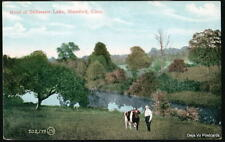 STAMFORD CT Stillwater Lake Pond Man & Bull Cow Vtg PC