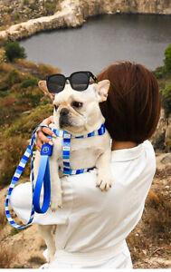 Colorful Harness Chest Leader Leash Collar Rope Dog Training Nylon Adjustable