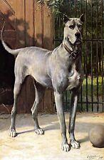Blue Great Dane by Dutch Otto Eerelman. Canvas Dog Art. 11x17 Print