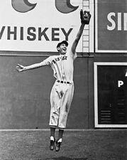 1939 Boston Red Sox TED WILLIAMS Glossy 8x10 Photo Baseball Print Poster