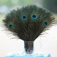 """50Pcs 100% Real Natural Peacock Feathers 10-12"""" Stage Costume Makeup DIY Tool US"""