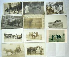 lot of 11 RPPCs of farmers and their horses, in VG condition