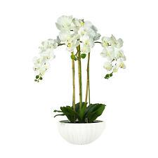 Deluxe Premium Quality Artificial White Orchids in Contemporary Ceramic Pot