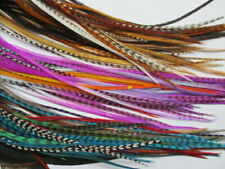 200 Feather hair extensions bulk wholesale for real mixed colours 5-11