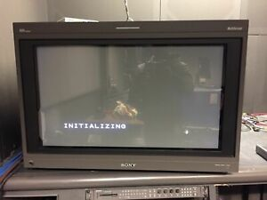 Sony BVM-D32E1WU  Color Monitor with BKM-10R  Refurbished  calibrated clea