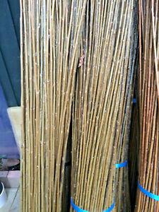 Weaving-Willow 6' Bundles Hurdle / Basketry  Willow Salix Triandra  Materials