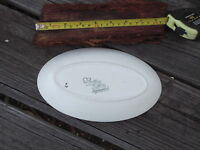 E RADFORD ENGLAND HANDPAINTED FLORAL OVAL PLATEL GOOD CONDITION