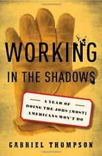Working in the Shadows: A Year of Doing the Jobs (