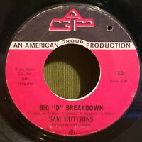 Sam Hutchins Funk Soul 45 I'm The One For You / Mr. D Breakdown AGP Records 120