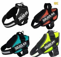 Julius-K9 Dog/Puppy IDC Powerharness - All Colours & Sizes