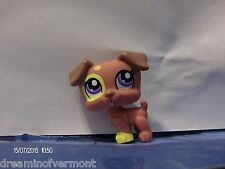 Littlest Pet Shop Red and Creme Jack Russell Terrier #1475 New Loose