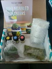Nib, Dyi Marbled Mini Planter Kit by Darby Smart