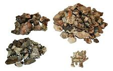 Lot of Mixed Oligocene Fossils 30 Millon Years Old #14676 112o