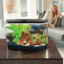 5-Gallon Panaview Aquarium Kit with Power Filter Energy-Efficient Led Lighting