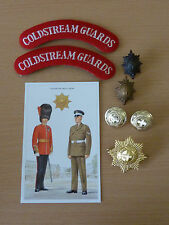 Queens Guards Badges, Patches and Buttons Huge Display Set