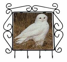 White Barn Owl Wrought Iron Key Holder Hooks Christmas Gift, AB-O67KH