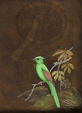 Ethnic Bird Miniature Painting Old Stamp Paper Watercolor Original Indian Art