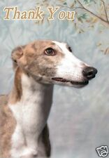 Greyhound Thank You Card By Starprint - No 1