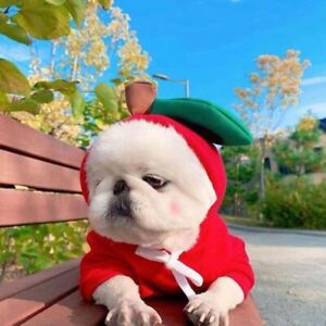 Warm Dog Winter Clothes Cute Fruit Dog Coat Hoodies Fleece Pet Costume Jacket