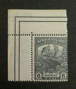 Newfoundland Stamp #120 Mint Never Hinged